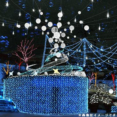 《ロマンチックに出会う♡》クリスマスマーケット in横浜赤レンガ倉庫