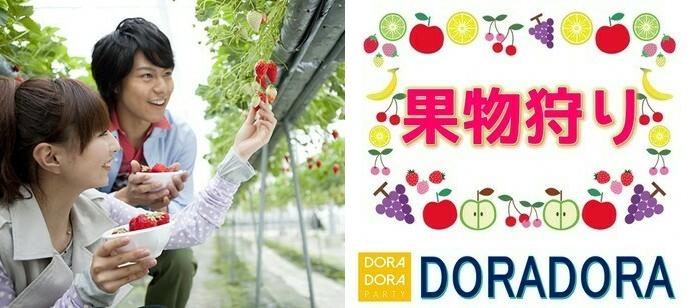 【神奈川/藤沢】11/30 食欲の秋フルーツ狩り恋活☆季節感溢れる企画です!出会える収穫体験合コン