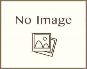 「★11/9 品川水族館めぐりで楽しく恋活・友達作り★」の画像2枚目