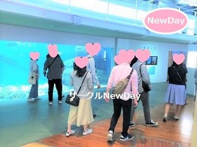 ★10/19 水族館コンin須磨海浜水族園 ★ 自然な出会いはここから ★