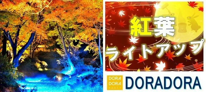 【東京/六義園】11/20(水)ライトアップ紅葉体験!情緒あふれる庭園デート!クリスマスまでに恋しよう!六義園紅葉合コン
